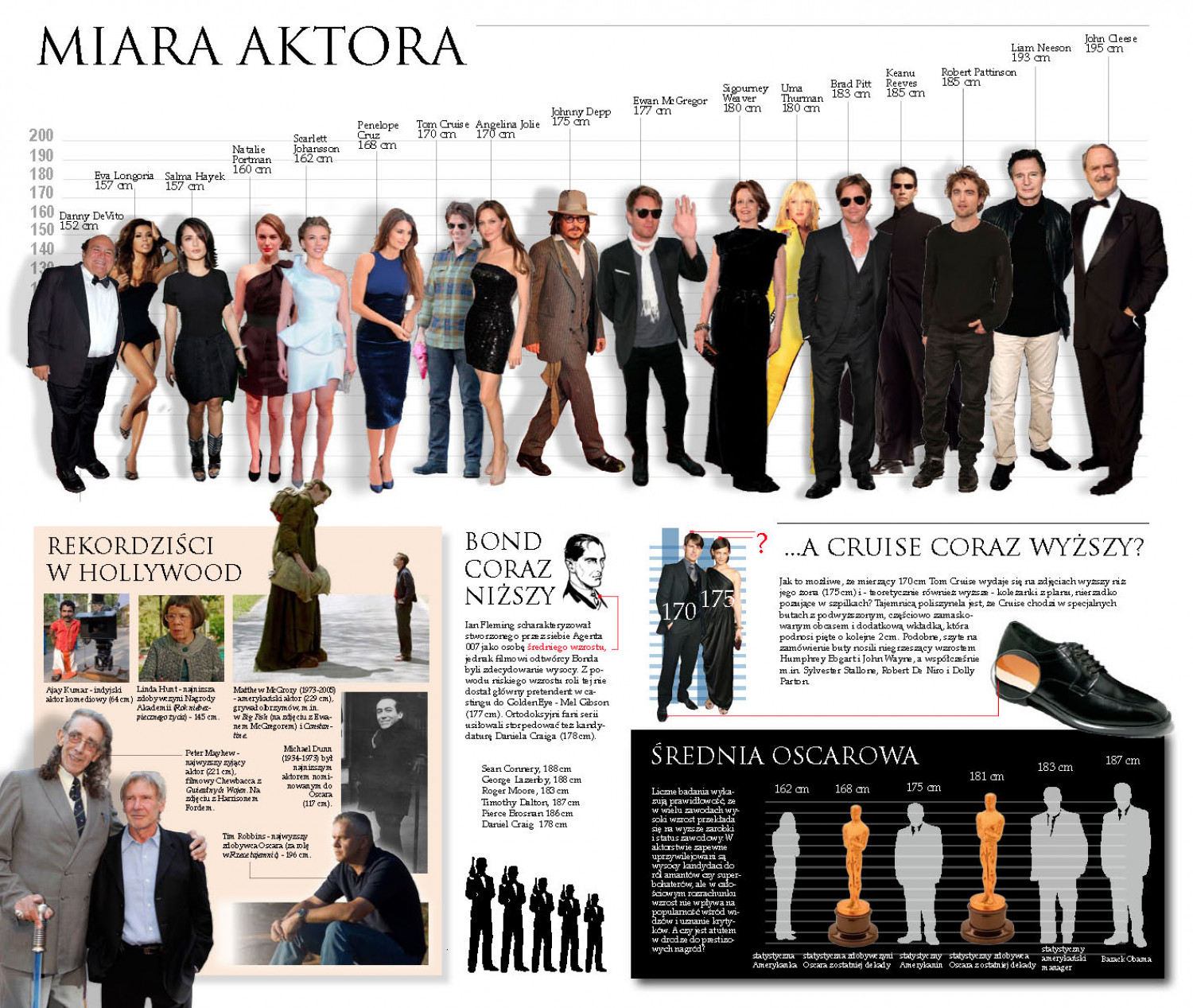 Hollywood Height Chart Infographic