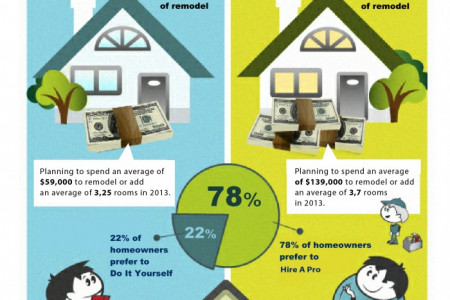 Home Remodel Do it Yourself vs Hire A Pro Infographic