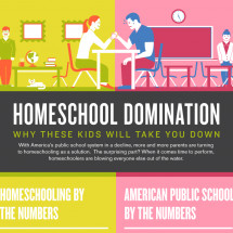 Homeschool Domination Infographic