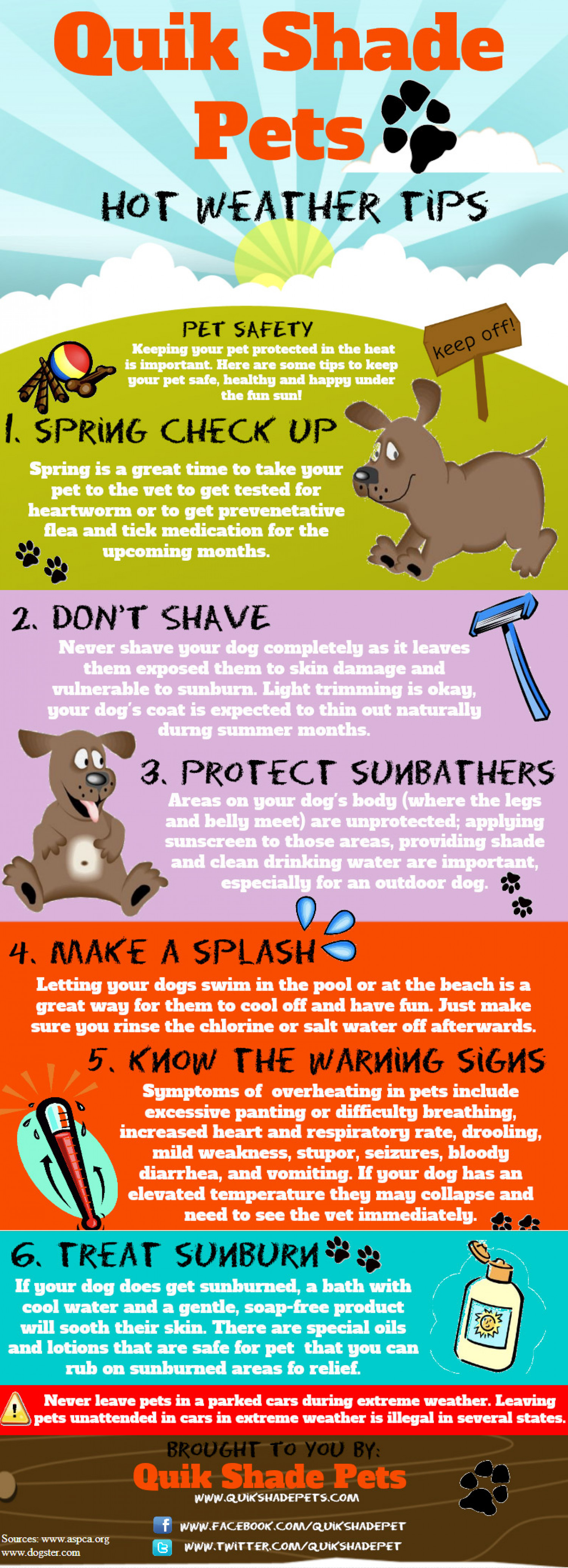 Hot Weather Tips For Your Pet  Infographic