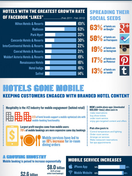 Hotel Internet Marketing Infographic