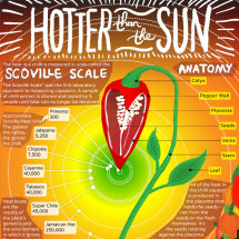 Hotter than the Sun Infographic