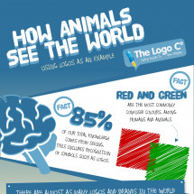 How Animals See The World Infographic