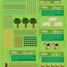 How Big A Backyard Do You Need To Live Off The Land? Infographic