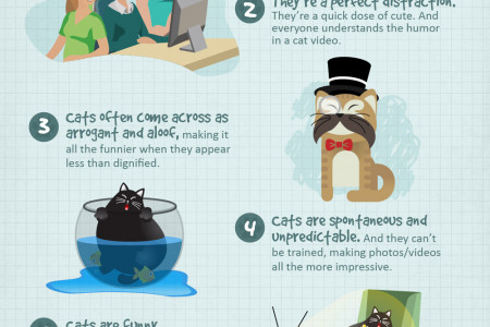 How Cats Rule the Web Infographic