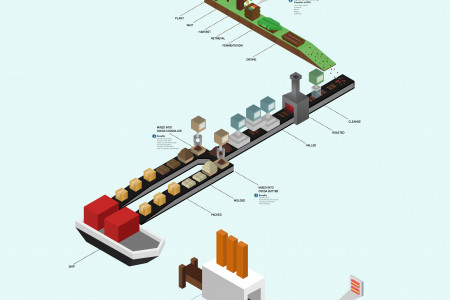 How Cocoa Is Made Infographic