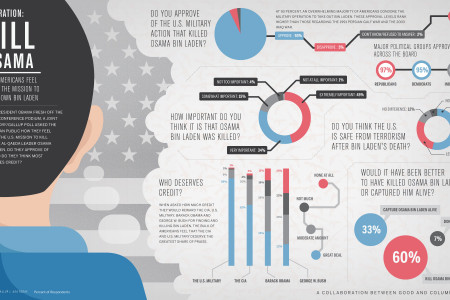 How Do Americans Feel About the Bin Laden Mission? Infographic
