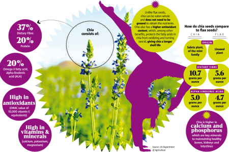 How do chia seeds compare to flax seeds? Infographic