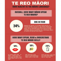 How Healthy is the Maori Language? Infographic