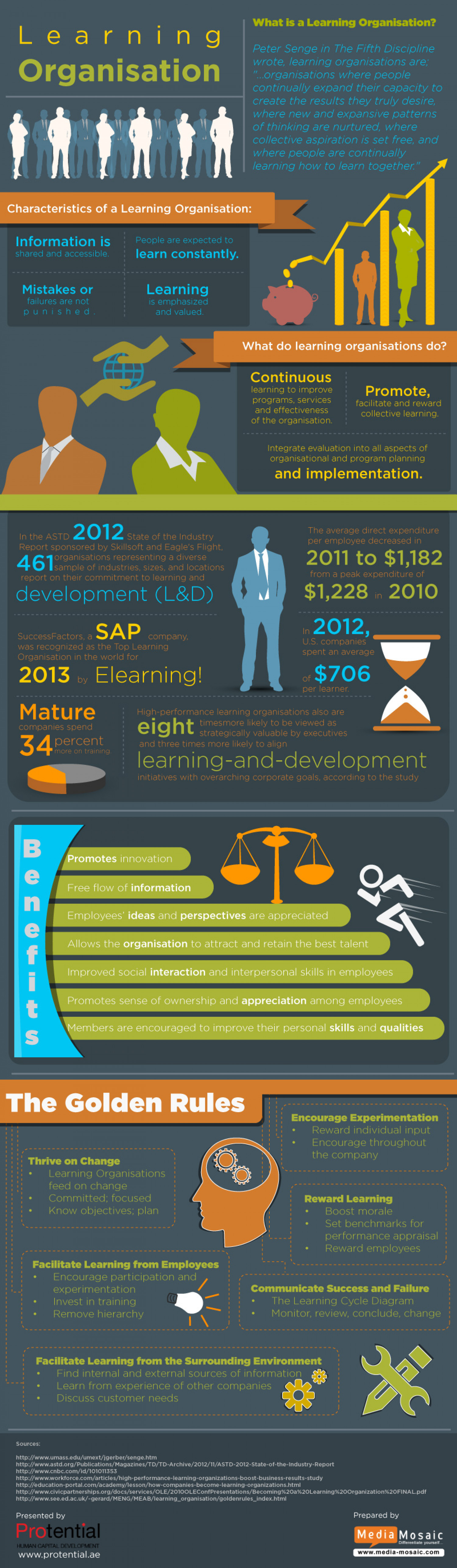 How is a Learning Organisation Differentiated  Infographic