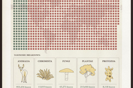 How Many Species Are On Earth? Infographic
