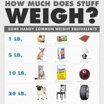 How Much Does Stuff Weigh? Infographic