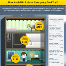 How Much Will A Home Emergency Cost You? Infographic