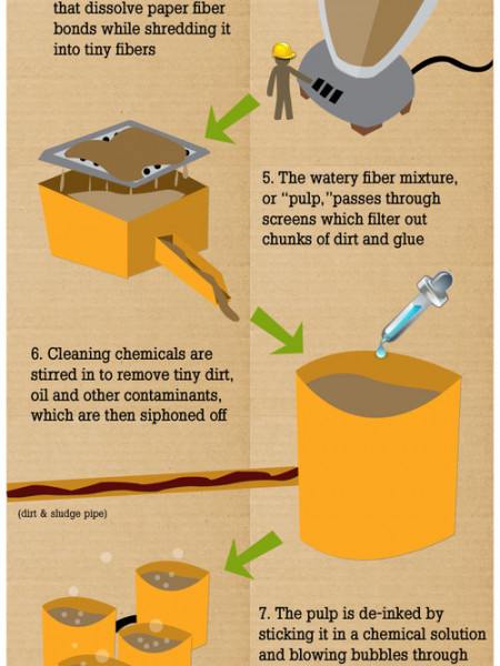 How Paper Recycling Works  Infographic