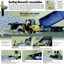 How Recycling Gets Sorted Florida Style Infographic