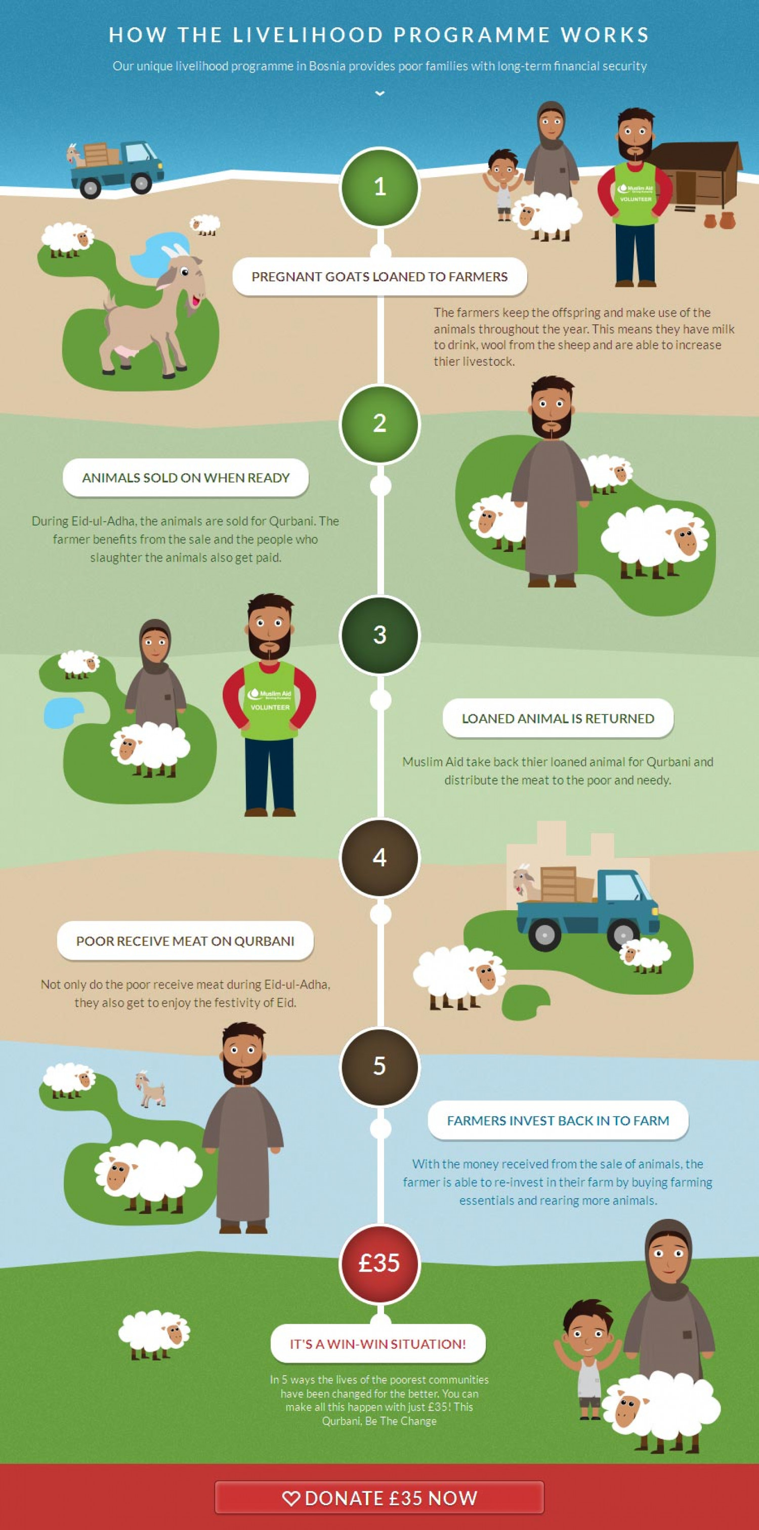 How the livelihood programme works Infographic