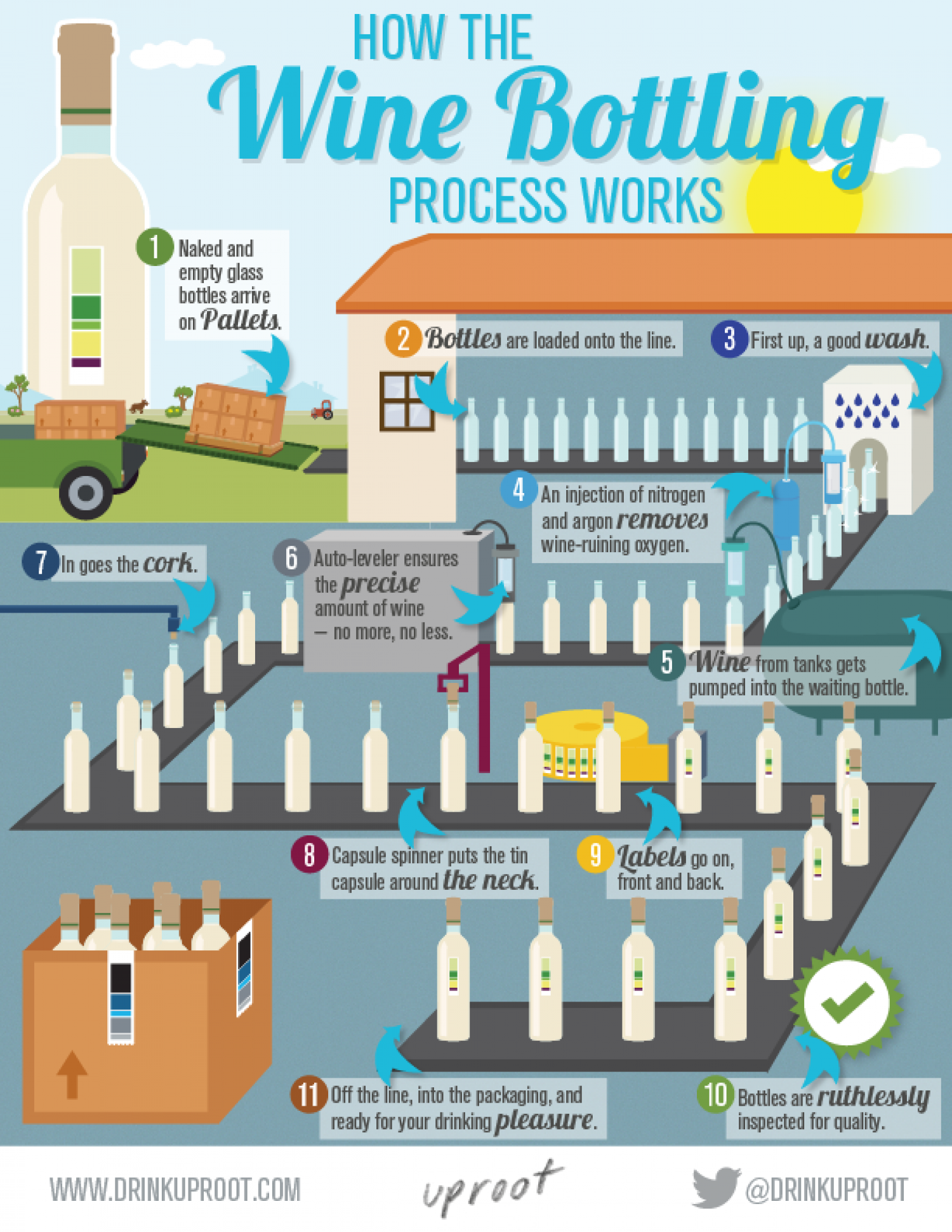 How the Wine Bottling Process Works Infographic