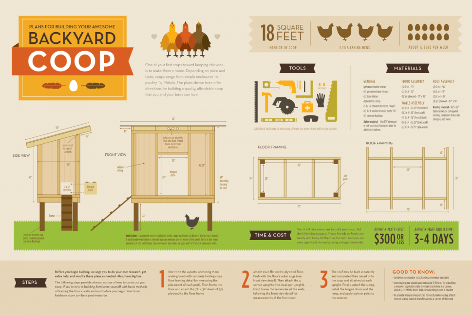How to Build A Chicken Coop Infographic