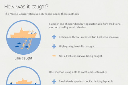 How to Buy Sustainable Cod Infographic