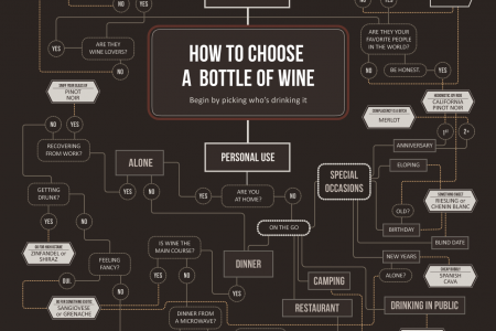 How to Choose a Bottle of Wine Infographic
