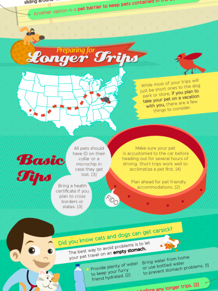 How to Travel Safely With Pets Infographic