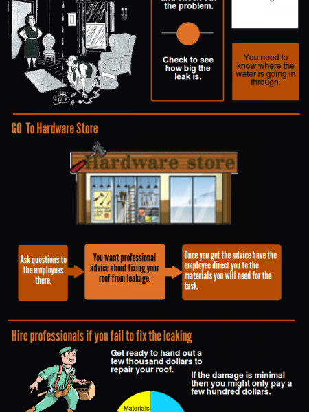 How To Fix A Leaking Roof Infographic