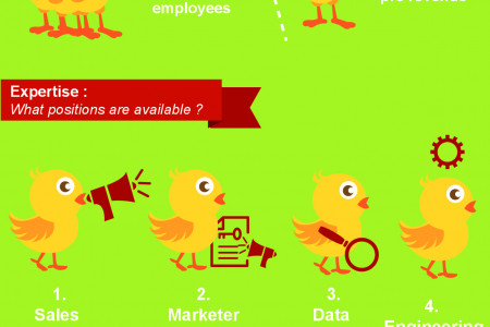 How to get a startup job Infographic