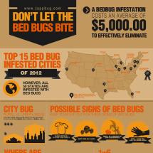 How to Get Rid of Bed Bugs [Infographic] by ZappBug Infographic