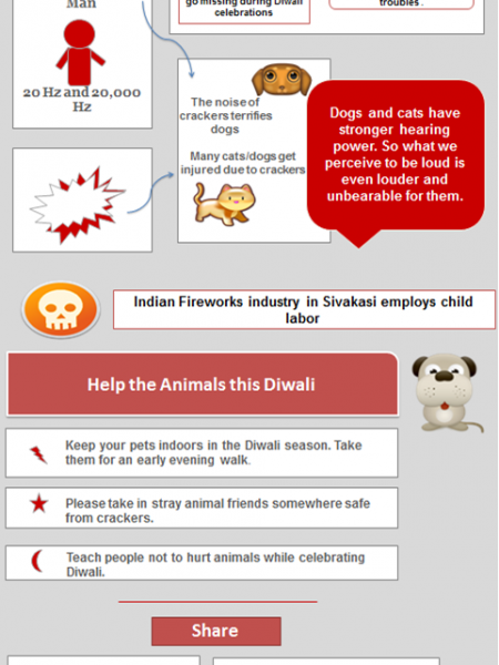 Help Dogs This Diwali! Infographic