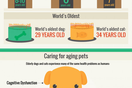 How To Help Your Pet Live Longer Infographic
