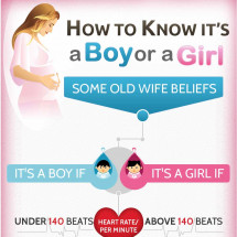 How to Know it's a Boy or a Girl Infographic