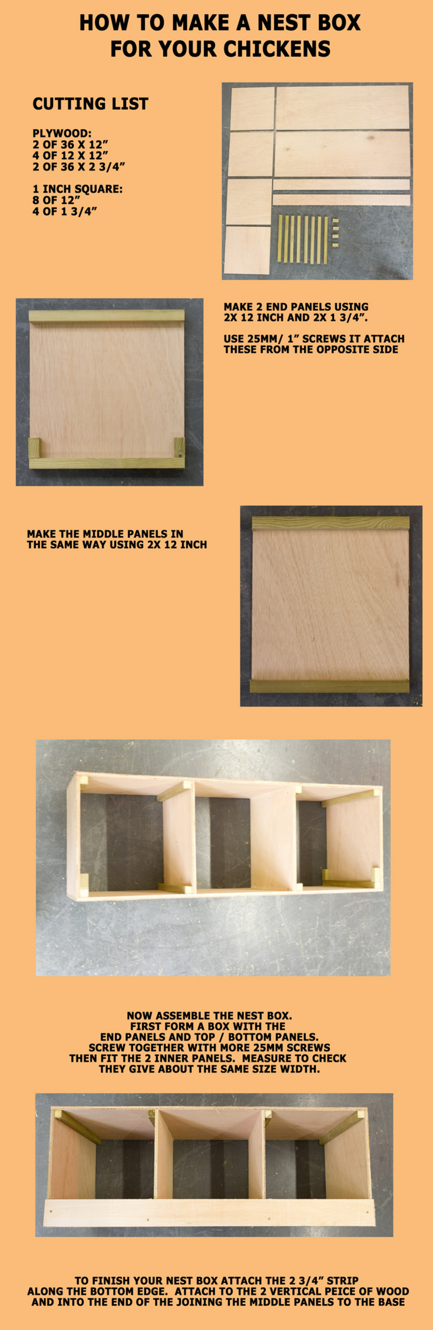 How to make a Nest box for your Chickens Infographic