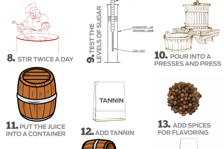 How to Make Wine in 21 Steps Infographic