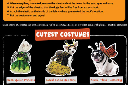 How To Make Your Own Pet Halloween Costume Infographic