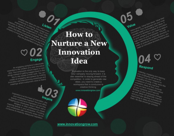 How to Nurture a New Innovation Idea