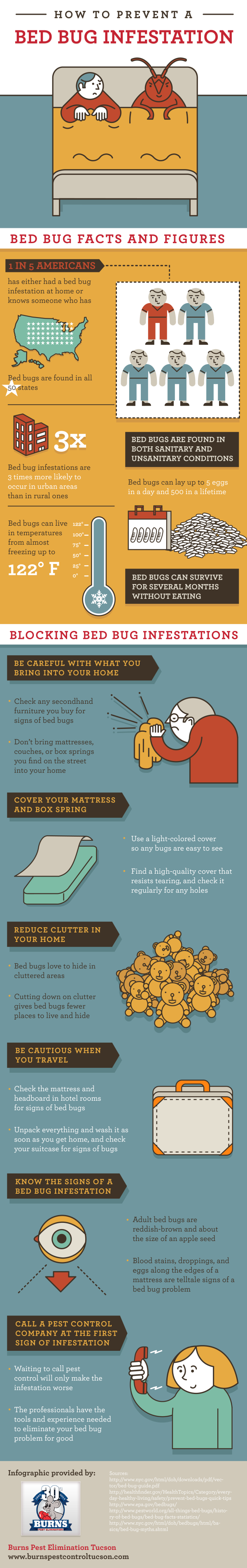 Do It Yourself Bed Bug Success Stories