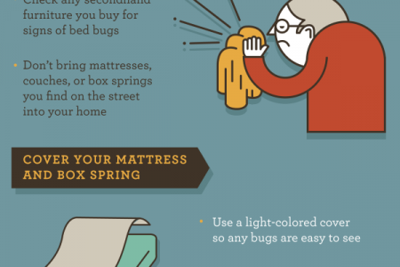 How to Prevent a Bed Bug Infestation Infographic