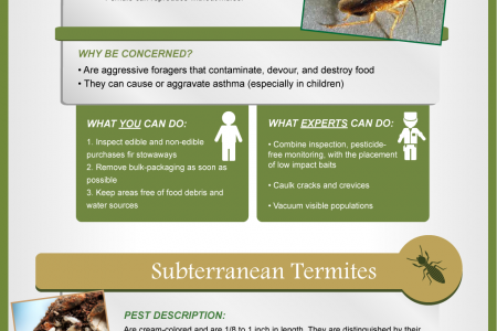 How to Prevent and Control a Northwest Pest Fest | Pests by Season  Infographic