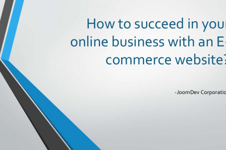 How to succeed in your online business Infographic