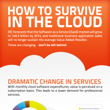 How to Survive In the Cloud Infographic