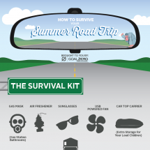 How to Survive Your Summer Road Trip Infographic