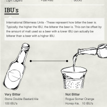 How to Talk like a Beer Snob Infographic