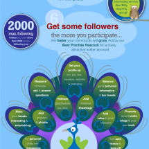 How to Twitter Infographic