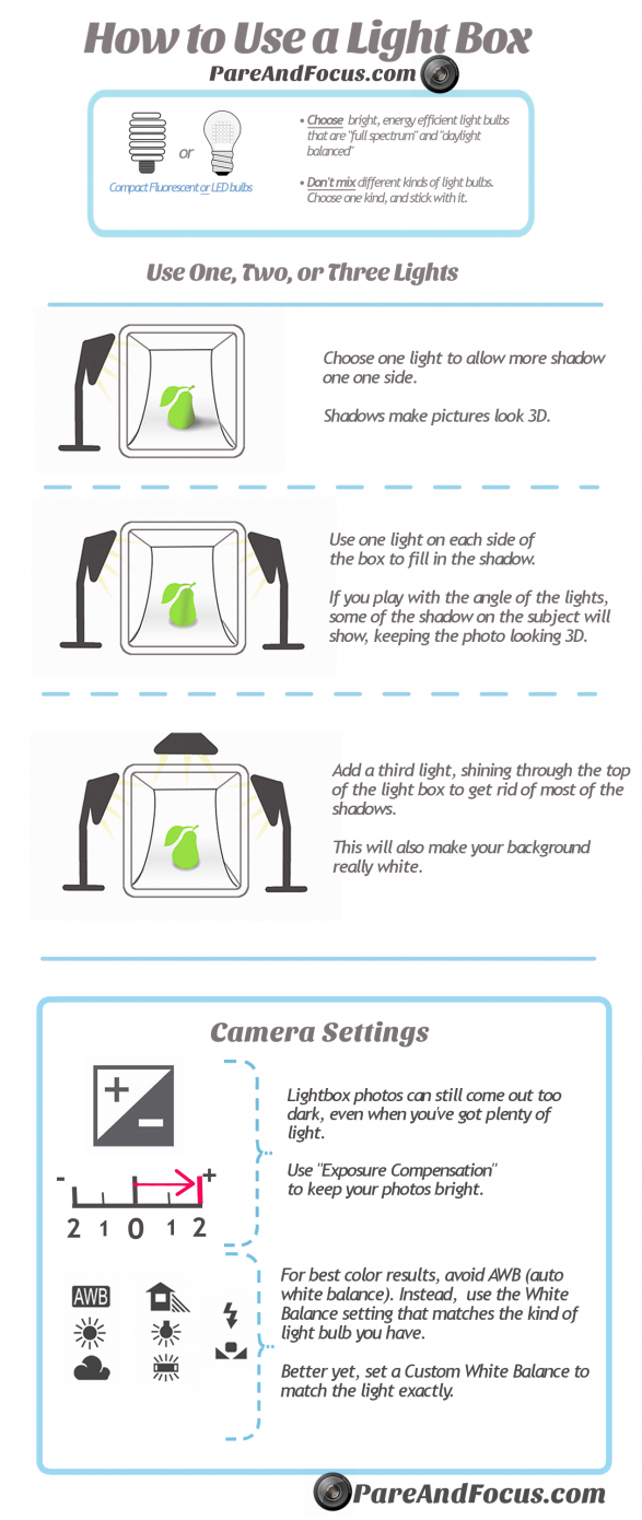 From See You Behind the Lens... How to Use a Light Box Infographic