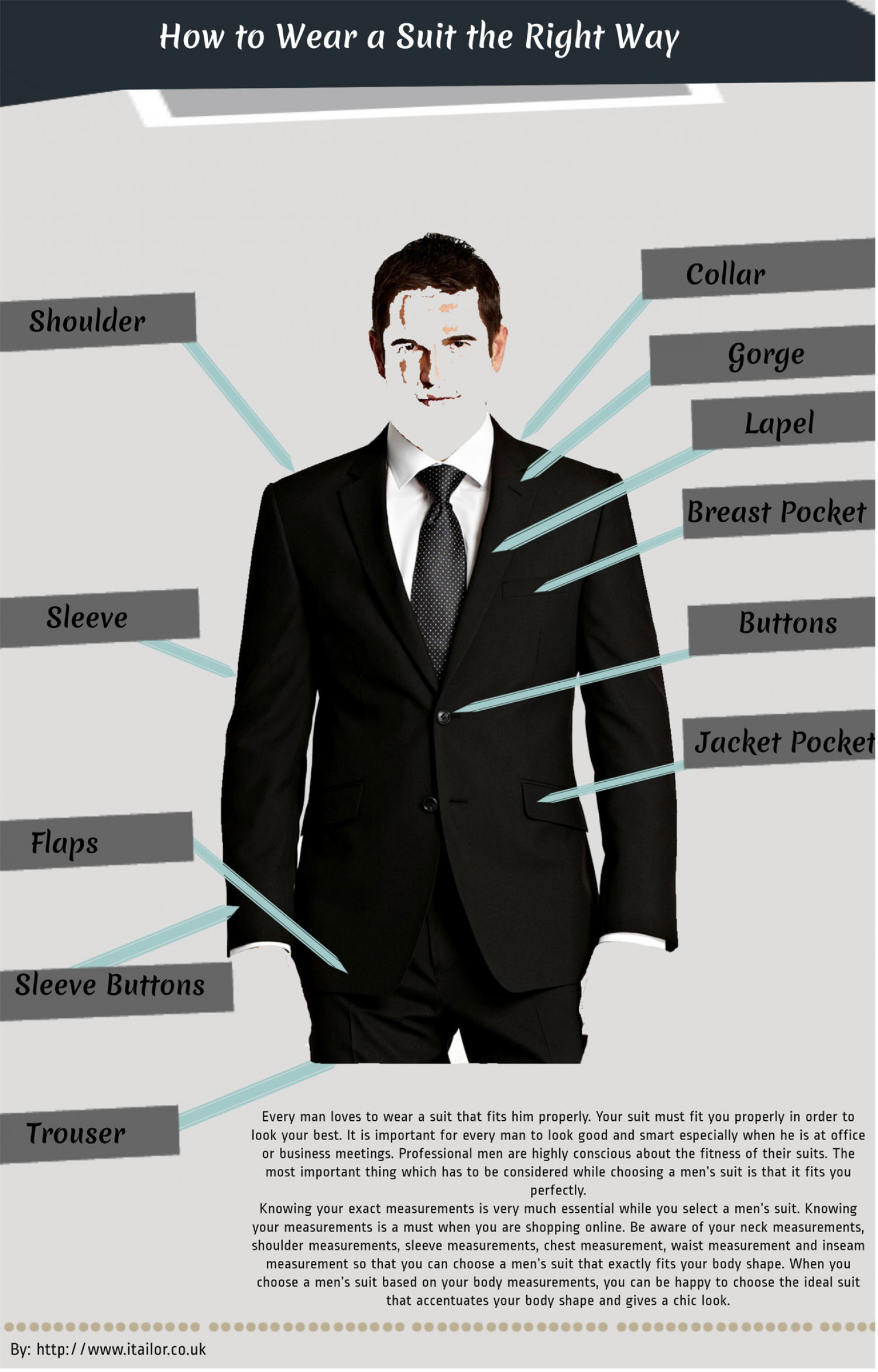 How To Wear A Suit The Right Way  Infographic