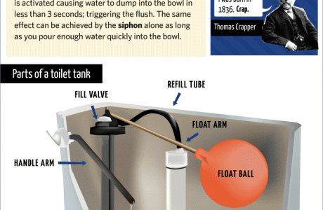 How Toilet Flushing Works