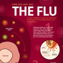 How You Got The Flu + Why it's Like Reality TV Infographic