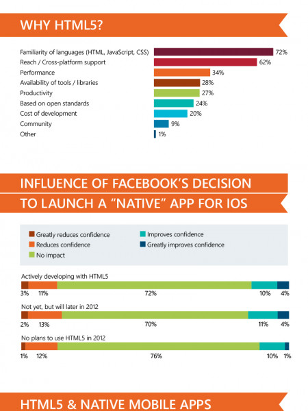 HTML5 Adoption Fact or Fiction Infographic