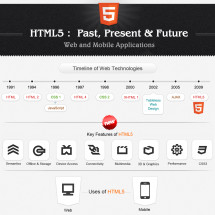 HTML5 Past, Present and Future Infographic