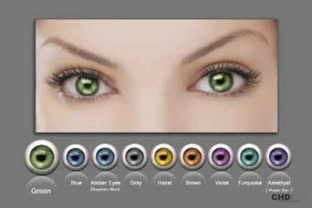 Human Eye Color Infographic